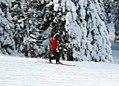Telemark Ehrwalder Alm.jpg