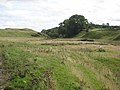 Terraces on the Swin Burn - geograph.org.uk - 959961.jpg