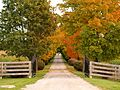 The Gates of Autumn (8037639413).jpg