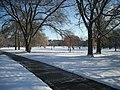 The Ohio State University December 2013 23 (The Oval).jpg