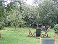 The Orchard, Grantchester - geograph.org.uk - 534675.jpg
