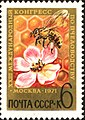 The Soviet Union 1971 CPA 3995 stamp (Honey Bee on Apple Blossom and Honeycomb).jpg
