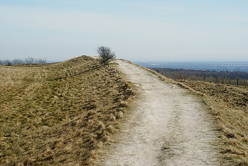 The Trundle, St.Roche's Hill, Sussex - geograph.org.uk - 1757079