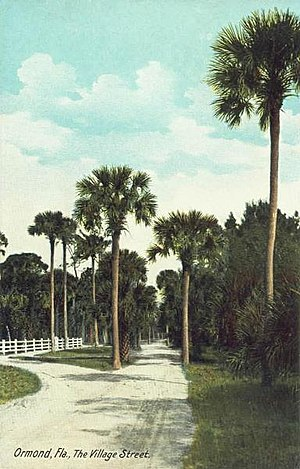 Ormond Beach, Florida - Village Street c. 1908
