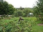 The Walled Garden at Hughenden Manor.jpg