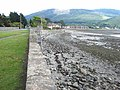 The shore of Carlingford Lough, Rostrevor - geograph.org.uk - 753816.jpg