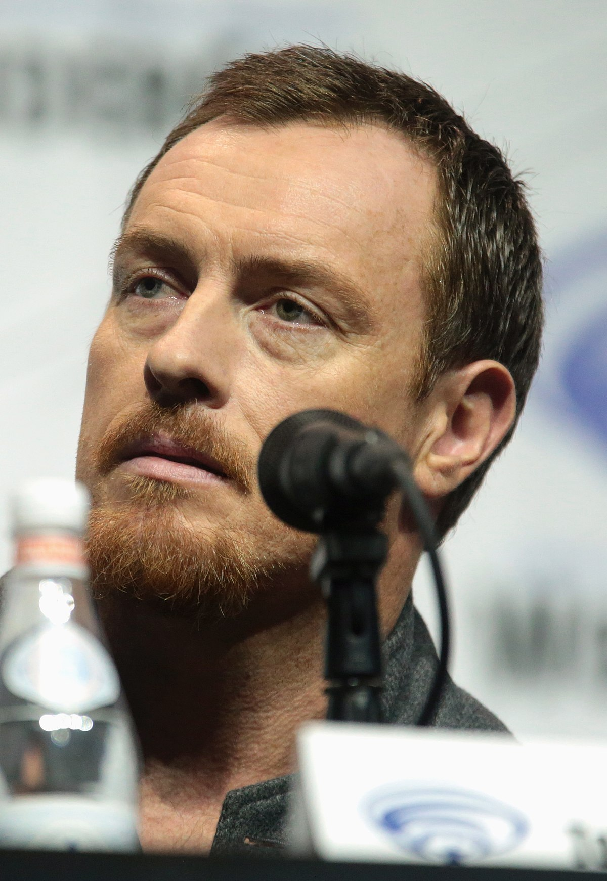 Toby Stephens (born 1969)