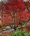 Tofuku-ji (4585779044).jpg