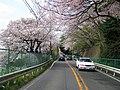 Tokyo Route 11 -04.jpg