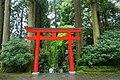 Torii - Hakone-jinja - Hakone, Japan - DSC05797.jpg