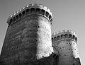Torres de Quart en blanc i negre.jpg
