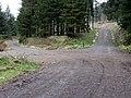 Track Junction - geograph.org.uk - 1227161.jpg
