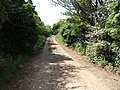 Track to Sleight Farm - geograph.org.uk - 457861.jpg
