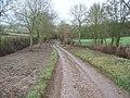 Track to Todenham - geograph.org.uk - 1619881.jpg