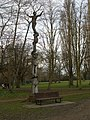 Tree sculpture, Cherry Hinton Hall - geograph.org.uk - 718366.jpg