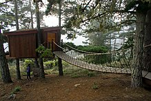 A cabin is built attached to four trees about 10 feet above grade. An elevated walkway is connected to the cabin's entrance.