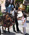 Troina - Festa dei Ramari per S.Silvestro - panoramio - giomodica (1).jpg