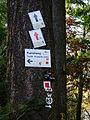 Tromm Wegweiser im Wald.JPG