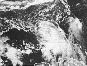Tropical Storm Beryl (1994) - Image: Tropical Storm Beryl (1994)