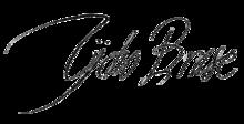 220px Tycho Brahe.signature