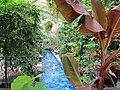 U.S. Botanic Garden in August (23428678869).jpg