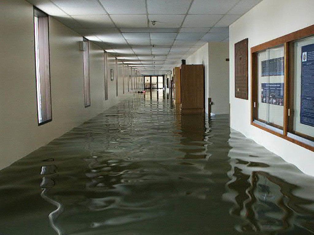 Library Room Csula
