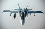 US Navy F-18E Super Hornets supporting operations against ISIL 141004-F-FT438-326.jpg