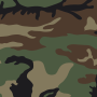 US Woodland pattern.svg