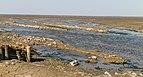 Uniek door eb en vloed steeds wisselend kweldergebied. Locatie, Noarderleech Provincie Friesland 014.jpg