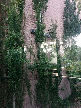 University of Calgary Faculty of Arts - The Social Science building's southern wall has been subject to student folklore. In current day, due to rain exposure, plants have grown onto the formerly acidic stone wall. Above the first E on the Social Science sign, one can faintly see a black ball, supporting evidence of the climbing myth.