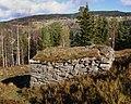 Valdres Folkemuseum - Reinsbu fra Galdeberg - 2.jpg
