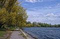 Vatutine city park.JPG