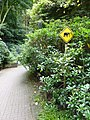 Verleihung der EGHN-Plakette an den Zoo Wuppertal 009.jpg