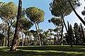 Villa Borghese 19.jpg