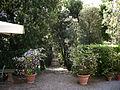 Villa i tatti, giardino, vialetto 02.JPG
