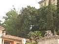 Visit a Udine 28.jpg