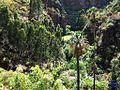 Vista del barranco de Azuaje - panoramio.jpg