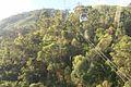 Vista desde el Teleferico 5.jpg