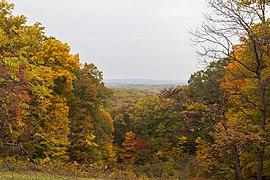 Vista desde la torre de observación, Parque Estatal Brown County, Indiana, Estados Unidos, 2012-10-14, DD 10.jpg