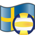 Volleyball Sweden.png