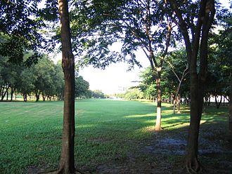 Chatuchak District - Wachira Benchathat Park