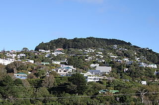 Wadestown, New Zealand Suburb in Wellington City, New Zealand