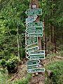 Wanderung um die Talsperre (ohne km-Angabe) bei Frauenwald - Rennsteig - Thüringer Wald - panoramio.jpg