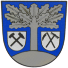 Coat of arms of the municipality of Hohndorf