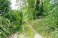 Warnham Lane - geograph.org.uk - 1392162.jpg