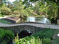 Water Gardens, Wakehurst Place - geograph.org.uk - 809394.jpg