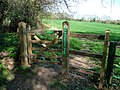 Wayfarer's Walk south of Shere Copse - geograph.org.uk - 1270812.jpg