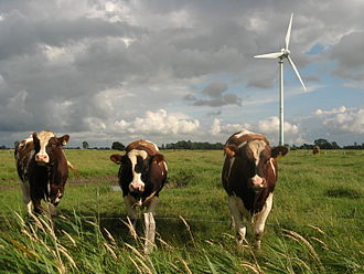 Human impact on the environment - Wind turbines in an agricultural setting