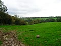 Wealden Landscape near Waldron - geograph.org.uk - 267568.jpg