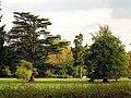Westonbirt Estate - geograph.org.uk - 69662.jpg